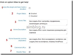 настройки All in One SEO