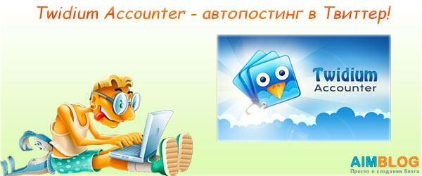Twidium Accounter