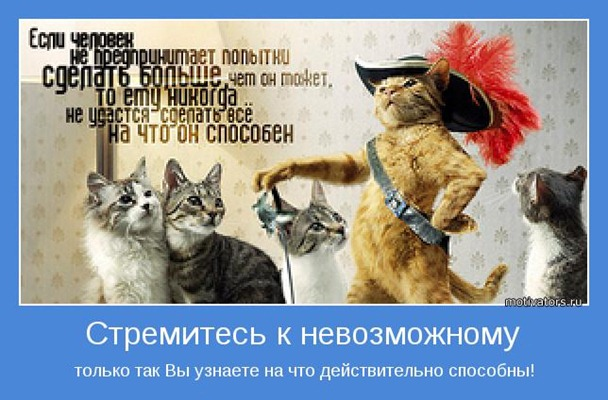 продвижение запроса RUSEOшник