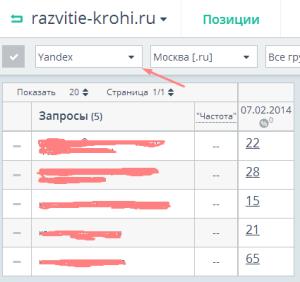 topvisor-11